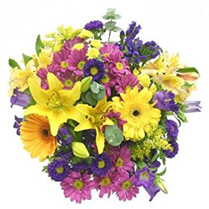 Ivy Lane Flowers & Gifts - Colourful Mix