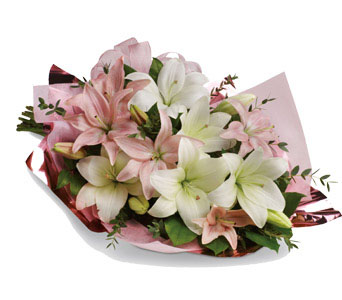 Ivy Lane Flowers & Gifts - Lovely Lillies