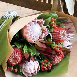 Ivy Lane Flowers & Gifts - Natives