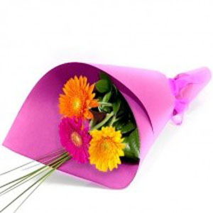Ivy Lane Flowers & Gifts - Simple and Sweet