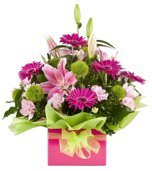 Ivy Lane Flowers & Gifts - Bella Arrangement
