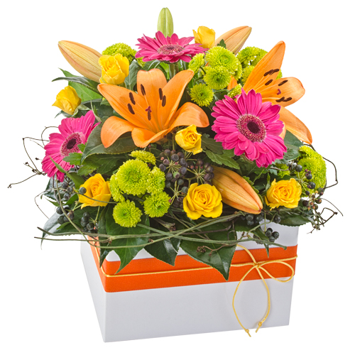 Ivy Lane Flowers & Gifts - Sweet Dreams Arrangement