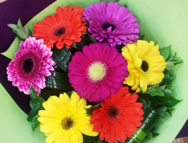 Ivy Lane Flowers & Gifts - Celebration