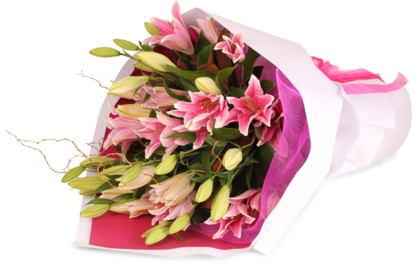 Ivy Lane Flowers & Gifts - Pretty Pink Lillies