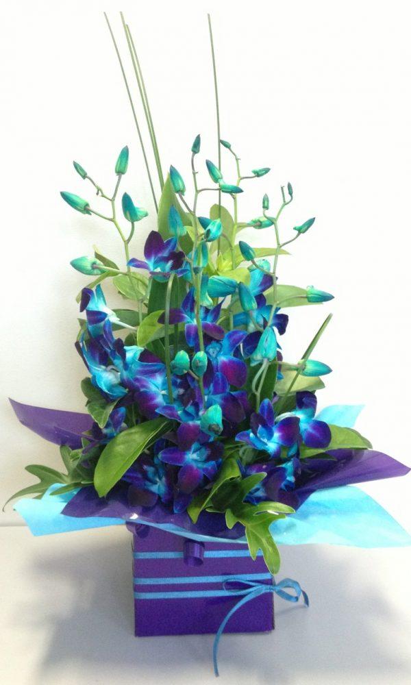Ivy Lane Flowers & Gifts - Sweet Dreams Arrangement
